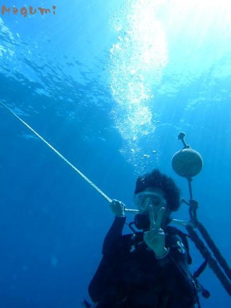 IMG 7408 カメと体験ダイビング♪