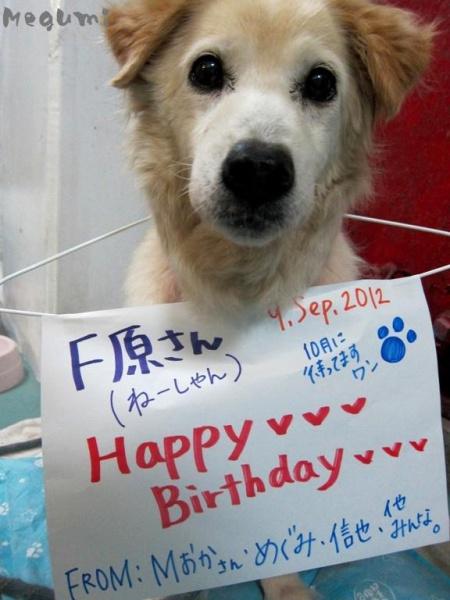 IMG 7969 ボス!Happy Birthday★・・・でした。