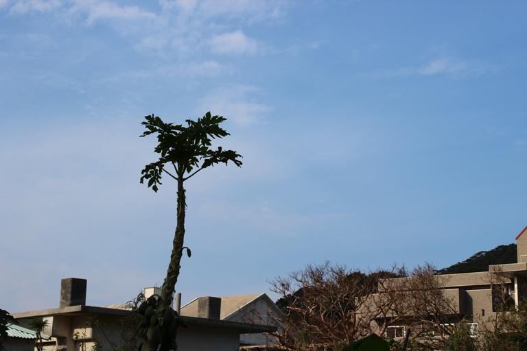 IMG 0137 M岡さん高気圧来島!!