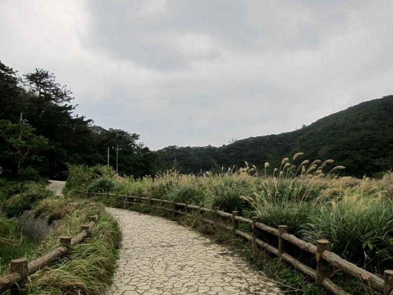 IMG 1051 高月山園地 展望所2。の存在・・・。