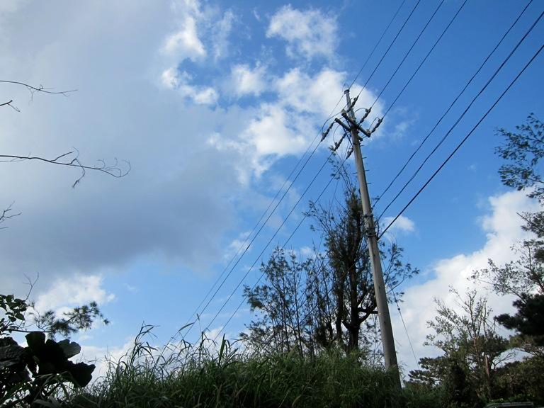 IMG 1093 台風の様な強風。