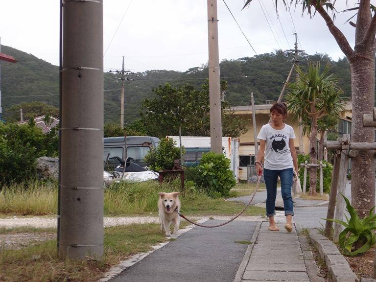PA061668 台風の日の過ごし方。