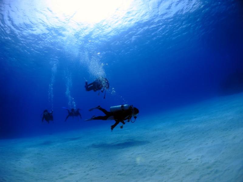 IMG 5090 座間味の海、満喫中。