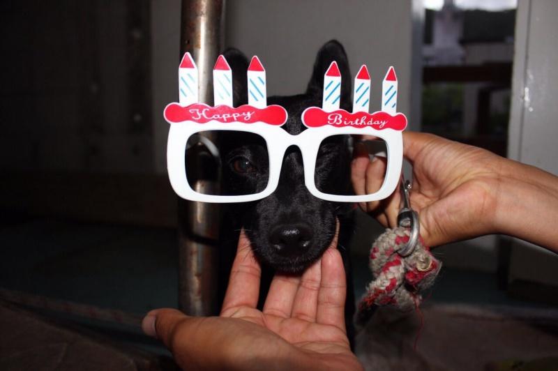 PIC 0034 クララさんの誕生日。