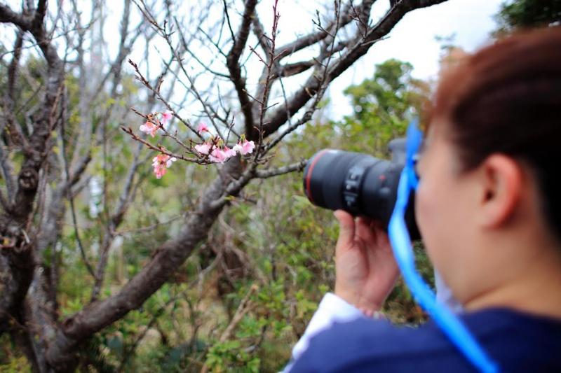 「発作的カメラ散歩ツアー」~山歩き編。