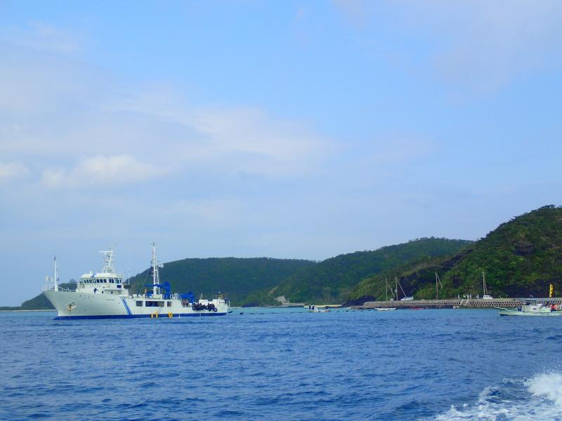 P3171278 穏やかぁーな海。ホエールウォッチング!