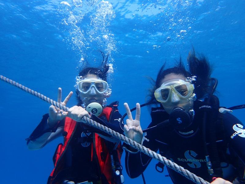 P8199269 一日飛ばしですが。diving!!