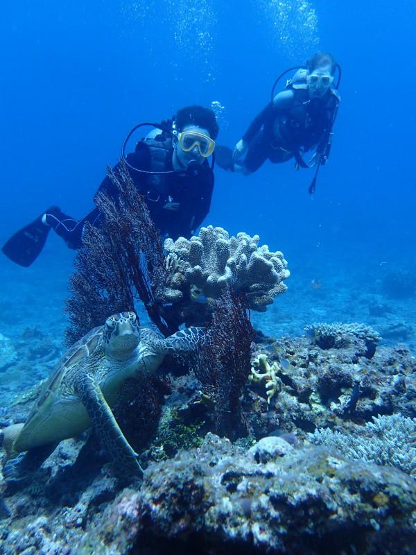 P8219310 e1471768593982 一日飛ばしですが。diving!!