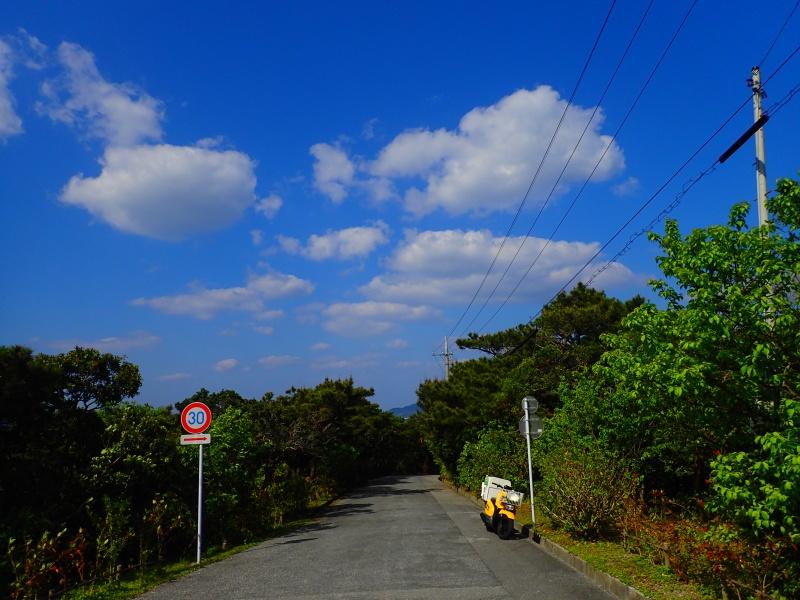 P4025644 仕事は午後から、空は晴れ!Letsヤマモモ狩り!!