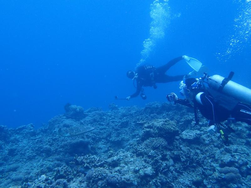 P5026829 初めての男の子。ダイビング!
