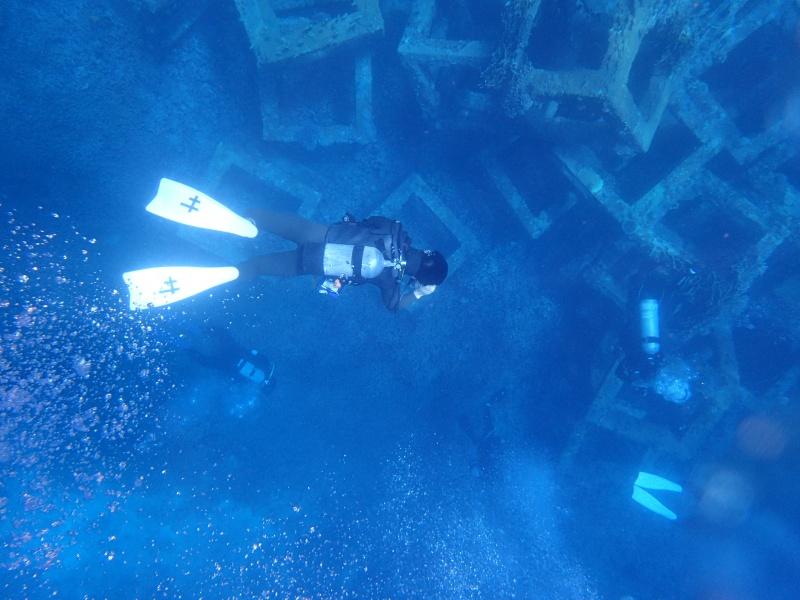 P5047035 Wide n macro! Diving!