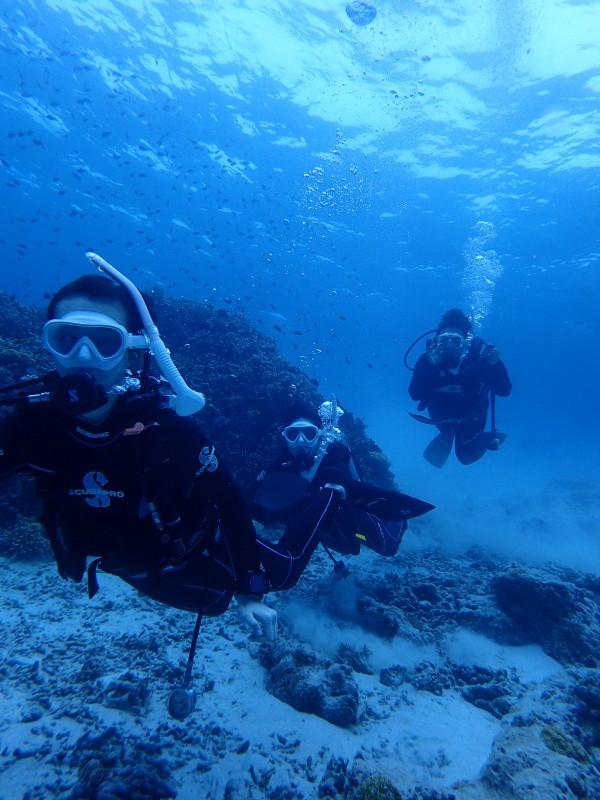P5057126 e1493990600198 Wide n macro! Diving!