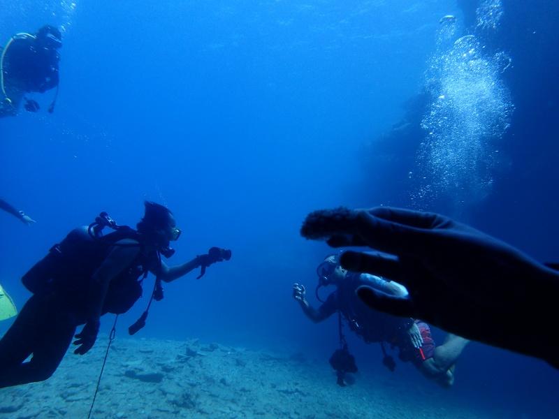 P7160965 サンゴ&デバ。ダイビング!