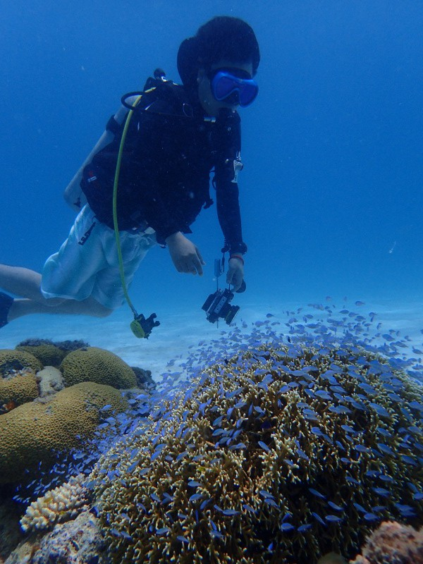 P7161006 e1500211116935 サンゴ&デバ。ダイビング!