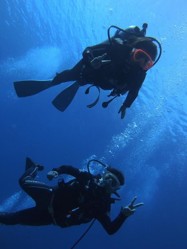 P9210232 e1505993893334 珍しい細かいの。ダイビング!