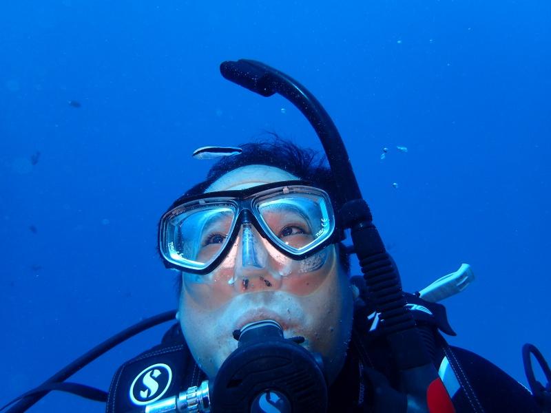 P9241749 魚が寄る寄る。ダイビング!