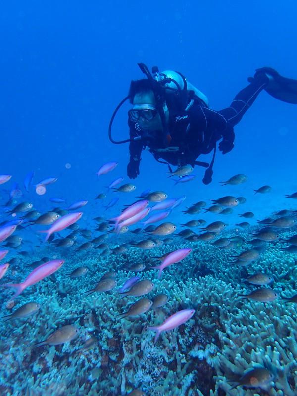 P9241750 e1506419212915 魚が寄る寄る。ダイビング!