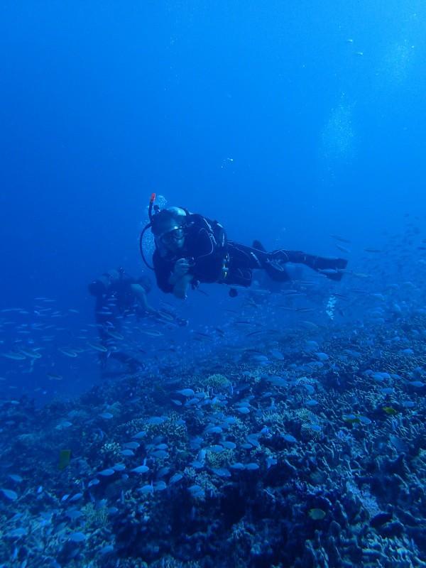 P9262004 e1506420225942 魚が寄る寄る。ダイビング!