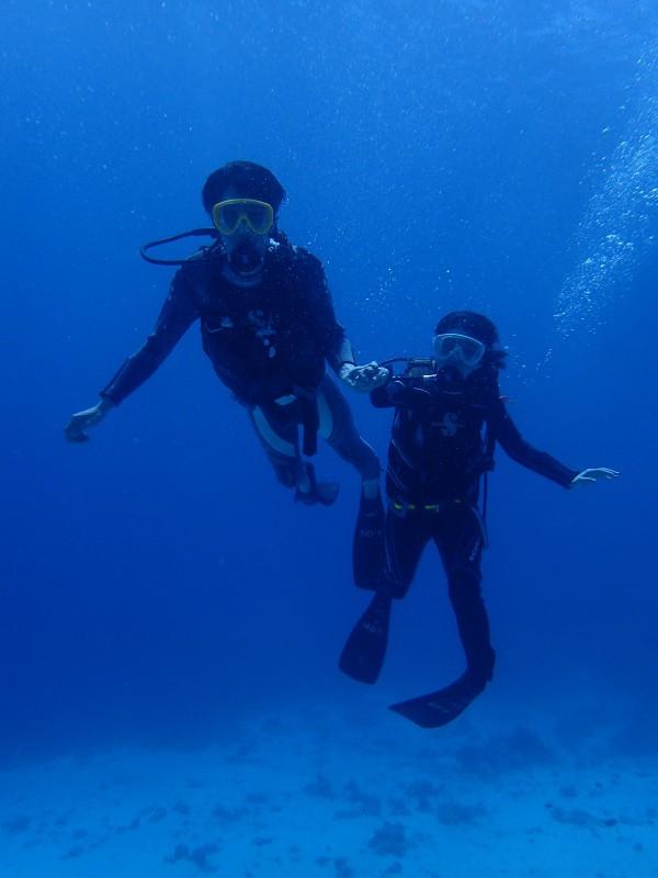 PA012405 e1506857708478 Sunny! Diving!